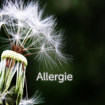 446_allergie.jpg.png